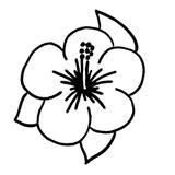 kit punch needle fleur hibiscus c'reparti