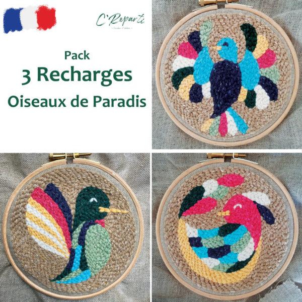punch-needle-oiseaux-paradis
