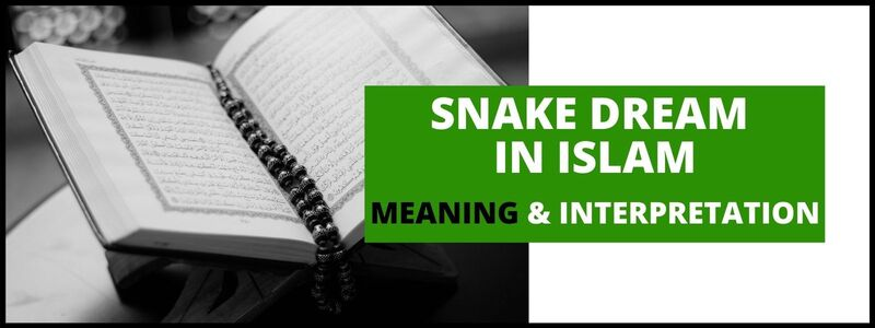 Snake in Dream islam