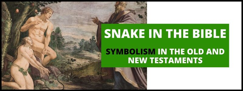 Snake In The Bible