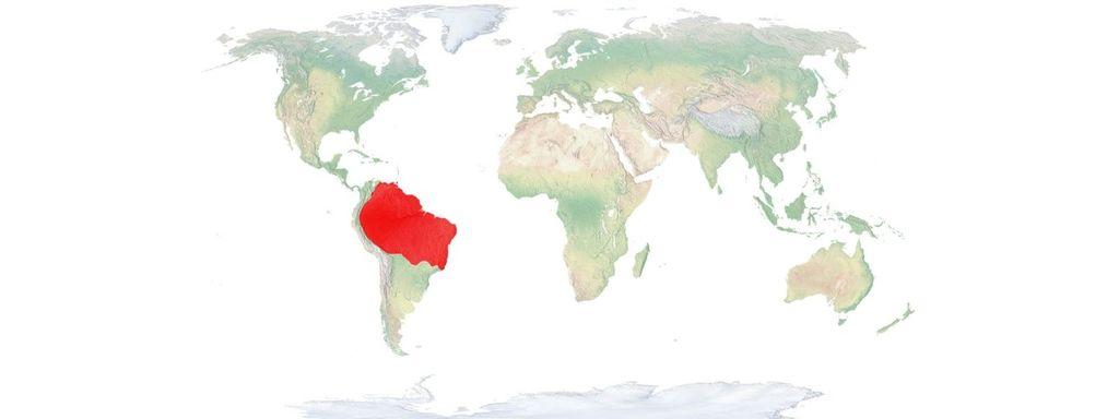 Green Anaconda Location