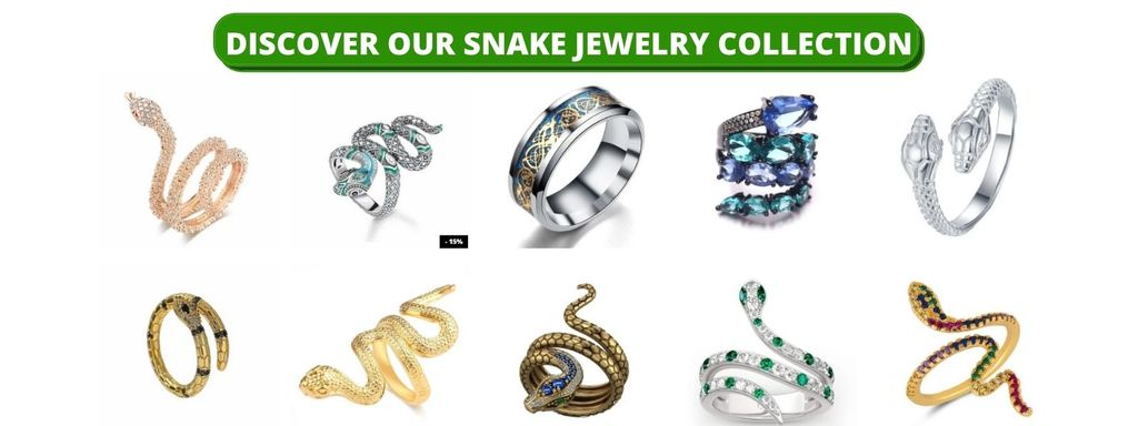 Snake-Jewelry-Collection