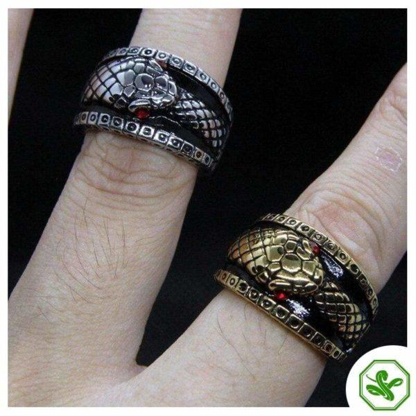 antique-ouroboros-ring 4