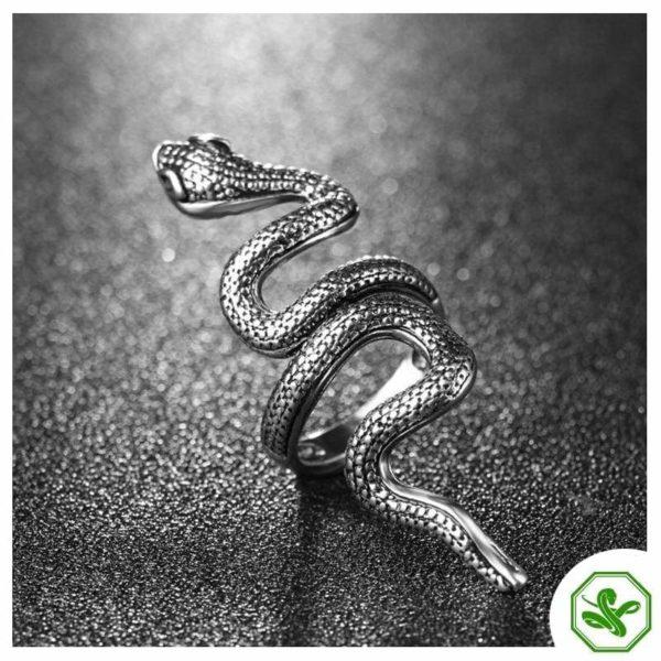 big-antique-snake-ring 4