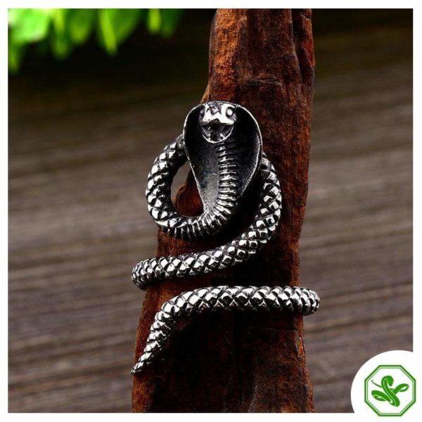 Cobra Ring 2