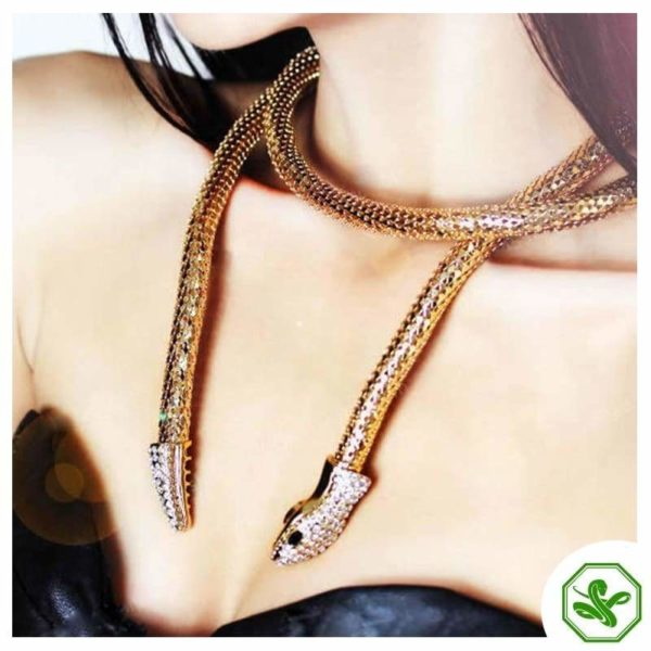 Flexible Snake Necklace 2