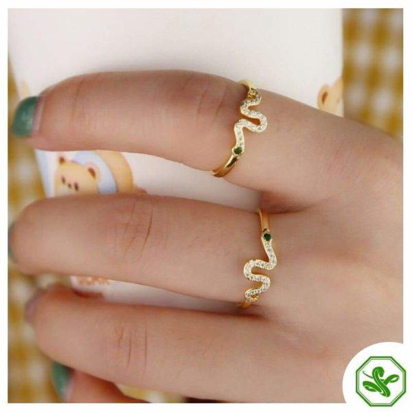 gold-ring-snake 4