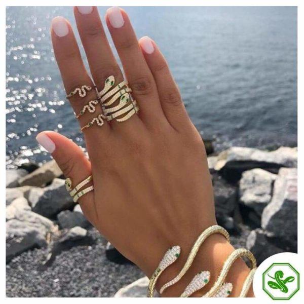 gold-ring-snake 3