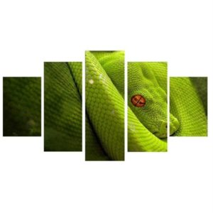 Green Snake Painting