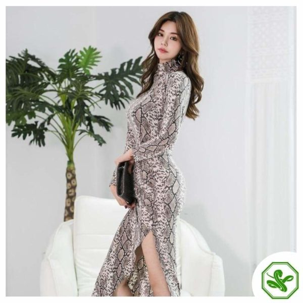 Long Sleeve Snake Print Dress 2