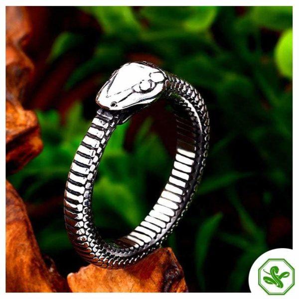Ouroboros Ring for Men's