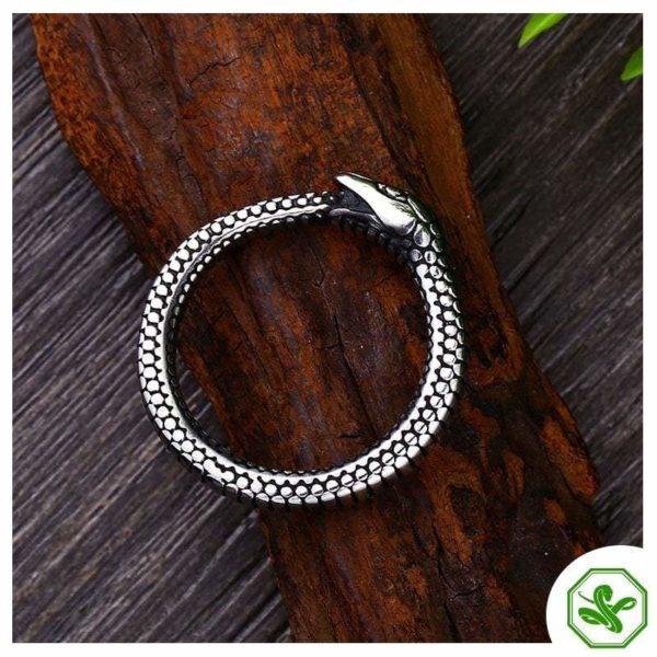 Ouroboros Ring Men's Sided