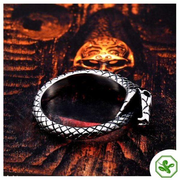 Ouroboros Ring for men