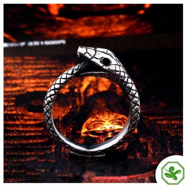 Ouroboros Ring Side for men
