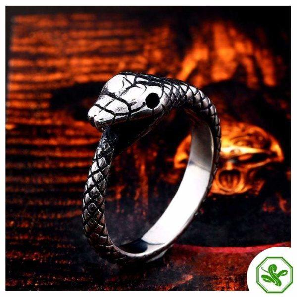 Ouroboros Ring stainless steel for men