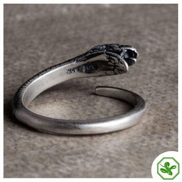 ouroboros-ring-silver 4