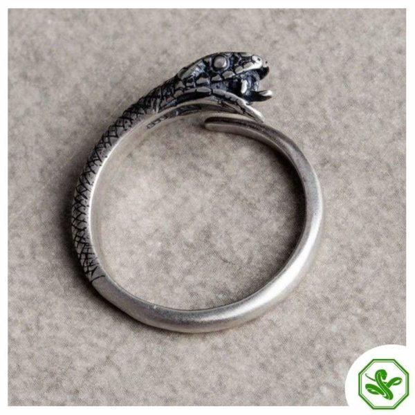 ouroboros-ring-silver 3