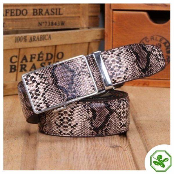 men's belt python