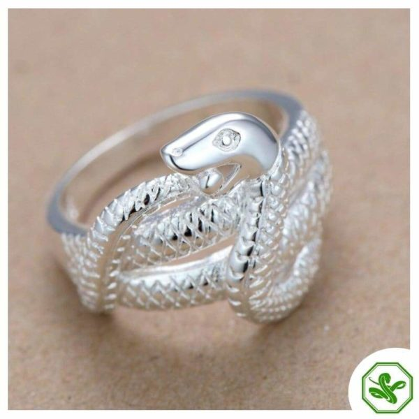 python-ring 2