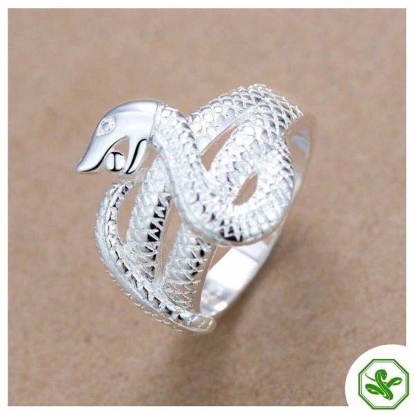 python-ring 3