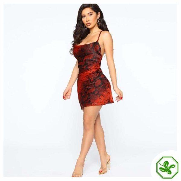 Red Snake Print Dress 3