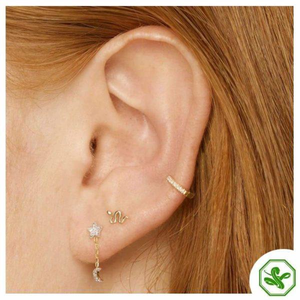 Small Snake Earrings 4
