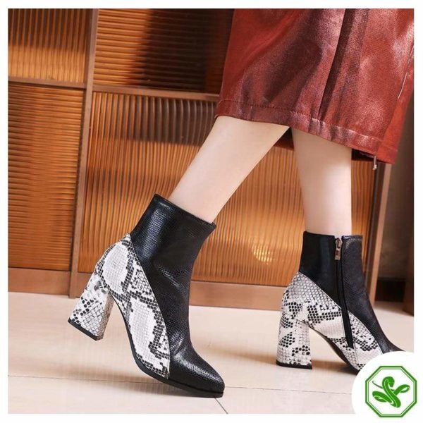 Snake Ankle Boots 2