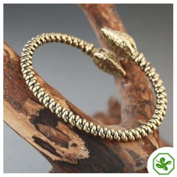 Snake Bone Bracelet 2