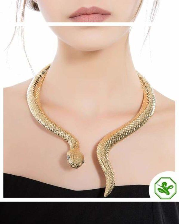 Snake Choker Necklace 2