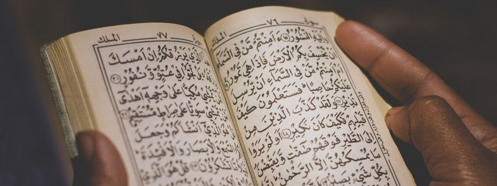 Snake Interpretation in Dream Islam