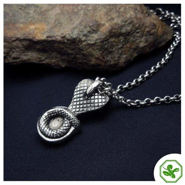 Snake Head Necklace 7