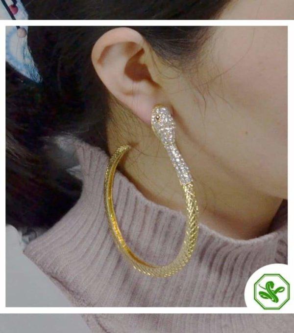 Snake Hoop Earrings 5