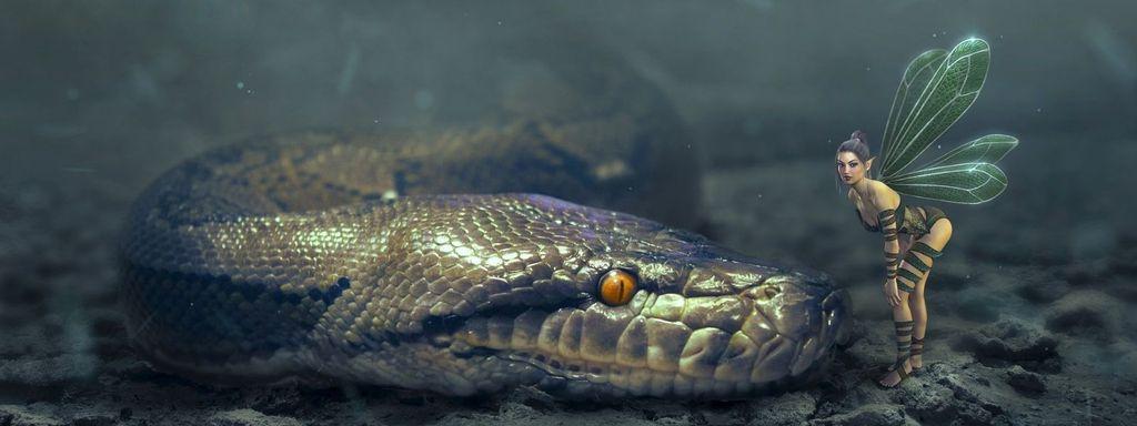 Snake In Dreams