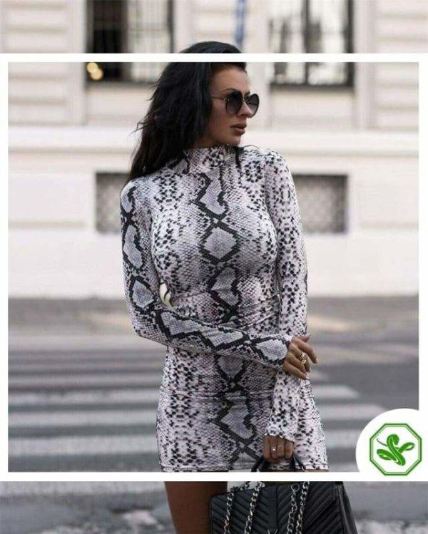 Snake Print Dress Long Sleeve Woman