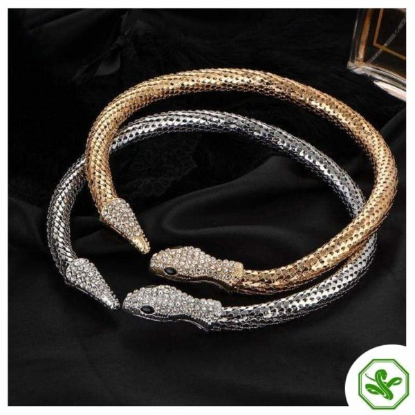 Snake Vertebrae Necklace 2