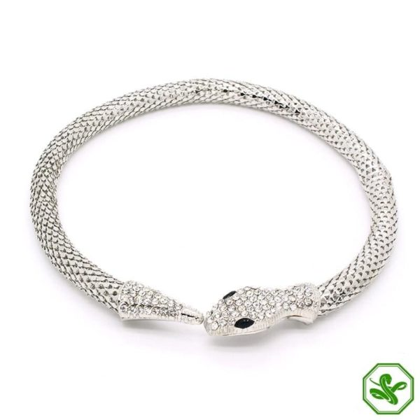 Snake Vertebrae Necklace 3
