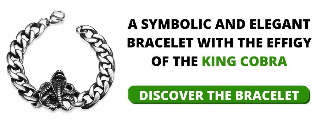 Stainless Steel Snake Chain Bracelet