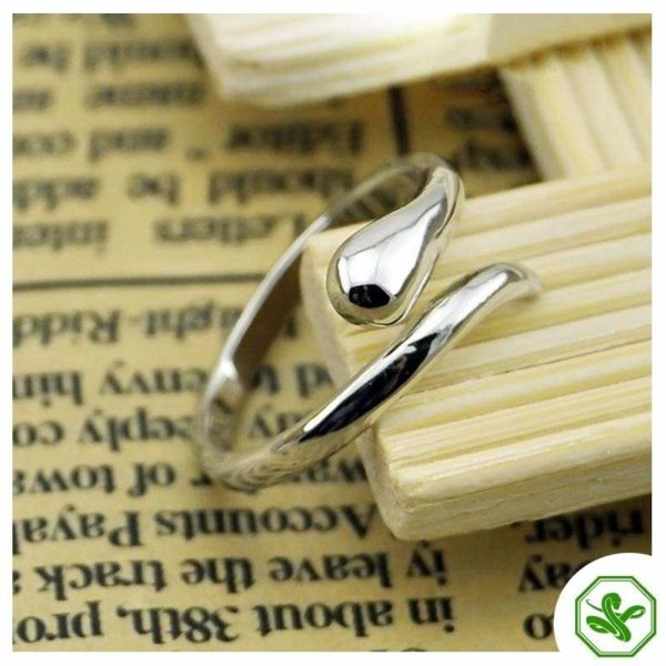 sterling-silver-serpent-ring 2