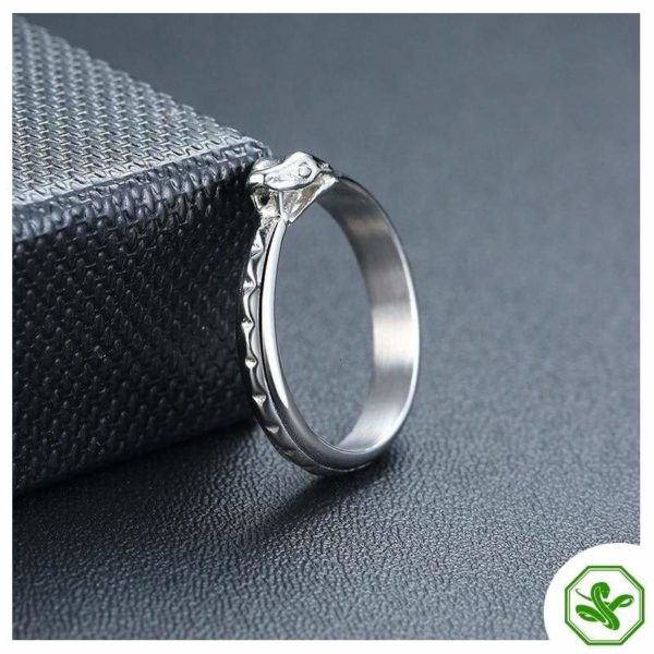 wedding-ouroboros-ring 2