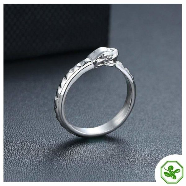 wedding-ouroboros-ring 3