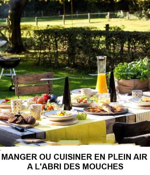 3 f436f5f9 8ab0 4140 b0d6 5ac47c51dc8e Ventilateur Anti Mouches Pour Table