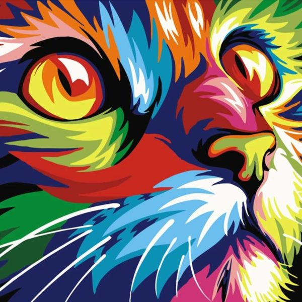 56894437 425634071505130 3071280501474983936 n Peinture Chat Multicolore
