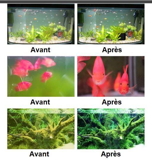 AQ5 Cube Purificateur D'eau Eco-Aquarium