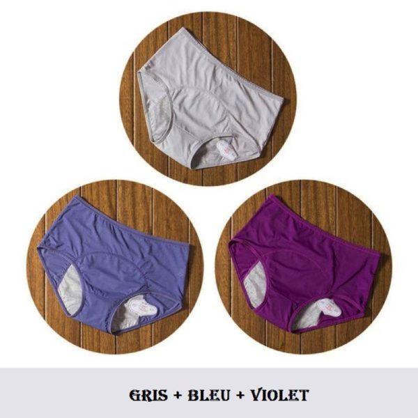 C18 Culottes Menstruelles (Lot De 3)