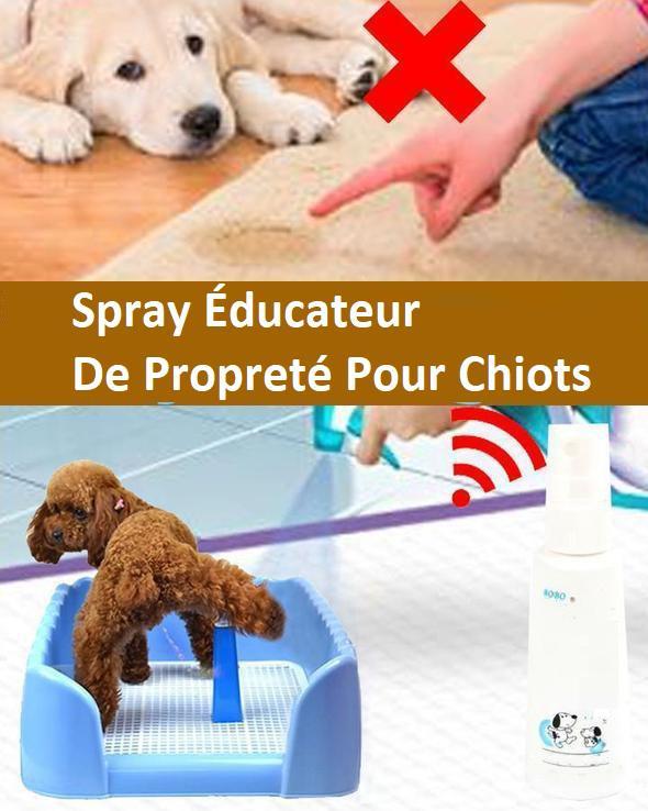 CHIEN1 7a4e2e0f 7c20 4d79 91f4 b8f6966e53a9 Spray Éducateur De Propreté Pour Chiots - Anti-Pipi