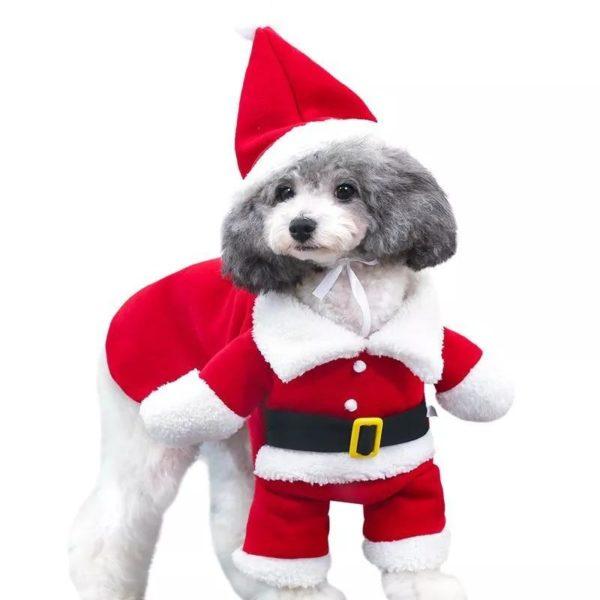 Costumesdenoelchienchat 5b1941e8 cf18 4e9f a213 805daf6fb865 Déguisement De Noël Pour Chats Et Chiens