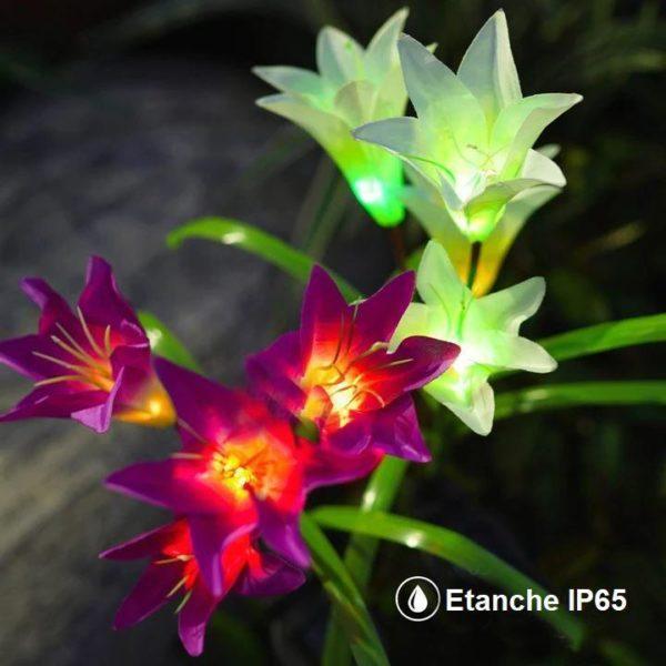 F4 c10f4580 0a10 4ec5 9c14 53a45cde0be9 Fleurs Artificielles Lumineuses