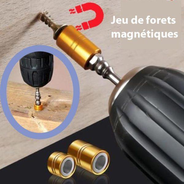 NAIQUBE 2018 Nouvelle Marque De Mode Couronne Imp riale Charme Bracelet Hommes Pierre Perles Pour Femmes 0 720x 1670754f e3c4 433b b3b3 3f806ac1eca1 Jeu De Forets Magnétiques