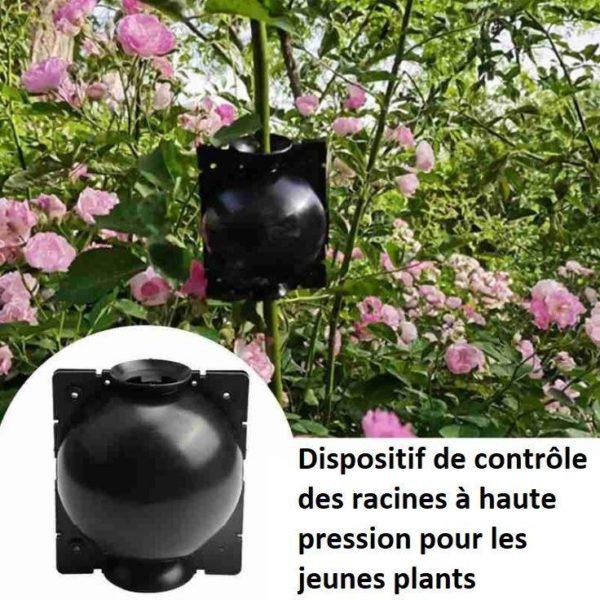 P9 a6be3093 58f2 49b5 9e88 c7472e06d654 Dispositif De Greffage Des Plantes