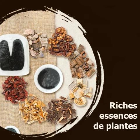 Riches essences de plantes Patch De Cicatrisation À Base De Plantes Pour Varices